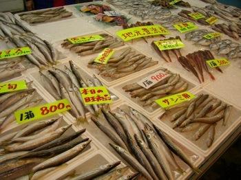 地元で水揚げされたばかりの新鮮な魚介類がいっぱいです